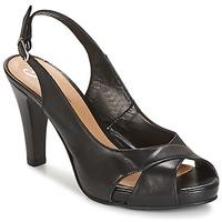 Pantofi Femei Sandale și Sandale cu talpă  joasă Betty London LIMONADE Negru