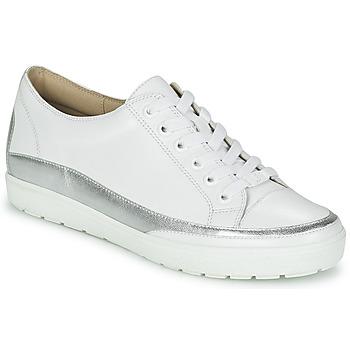 Încăltăminte Femei Pantofi sport Casual Caprice BUSCETI Alb / Argintiu