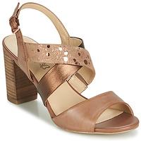 Pantofi Femei Sandale și Sandale cu talpă  joasă Caprice BOLAO Maro