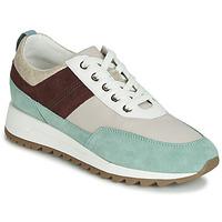 Încăltăminte Femei Pantofi sport Casual Geox D TABELYA Bej / Maro / Verde