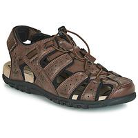 Pantofi Bărbați Sandale sport Geox UOMO SANDAL STRADA Maro