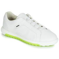 Încăltăminte Bărbați Pantofi sport Casual Geox U NEXSIDE Alb