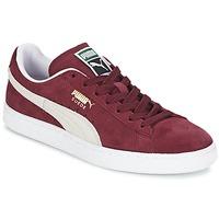 Încăltăminte Pantofi sport Casual Puma SUEDE CLASSIC + Roșu / Alb