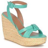 Pantofi Femei Sandale și Sandale cu talpă  joasă Robert Clergerie DEBA Pacific / Natural