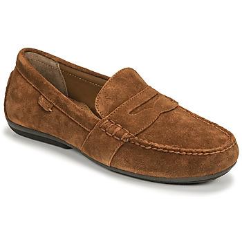 Pantofi Bărbați Mocasini Polo Ralph Lauren REYNOLD Maron