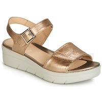 Pantofi Femei Sandale și Sandale cu talpă  joasă Stonefly AQUA III 2 LAMINATED Auriu