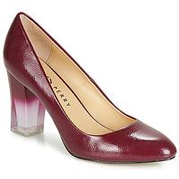 Încăltăminte Femei Pantofi cu toc Katy Perry THE A.W. Roșu