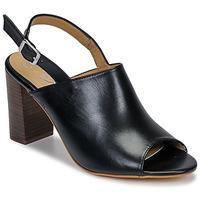 Pantofi Femei Sandale și Sandale cu talpă  joasă Betty London JIKOTEGE Negru