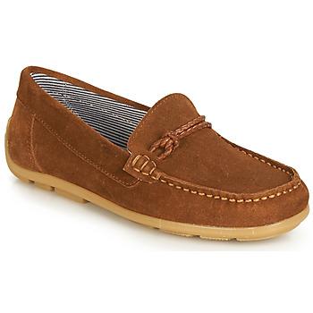 Încăltăminte Fete Pantofi Derby André GASPARD Maro
