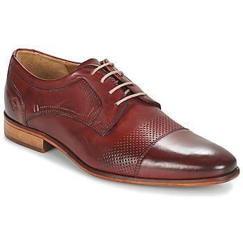 Pantofi Bărbați Pantofi Derby André LIVING Bordo