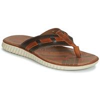 Pantofi Bărbați  Flip-Flops André ARAGOSTA Maro
