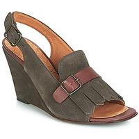 Pantofi Femei Sandale și Sandale cu talpă  joasă Chie Mihara  Gri