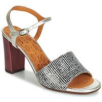 Pantofi Femei Sandale și Sandale cu talpă  joasă Chie Mihara PARIGI Argintiu / Negru