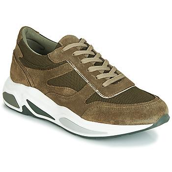 Pantofi Femei Pantofi sport Casual André ROLLO Verde