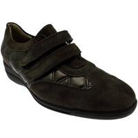 Pantofi Femei Pantofi sport Casual Calzaturificio Loren LOL8075m marrone