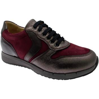 Pantofi Femei Pantofi sport Casual Calzaturificio Loren LOC3818bo tortora