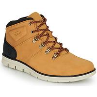 Pantofi Bărbați Pantofi sport stil gheata Timberland BRADSTREET HIKER Galben-grâu / Maro