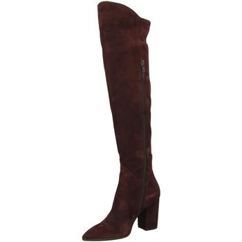 Pantofi Femei Cizme lungi peste genunchi Le Pepé LE PEPE CAMOSCIO vino-vinaccio