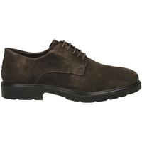 Pantofi Bărbați Pantofi Derby IgI&CO UGL 21006 caffe-caffe_SS_