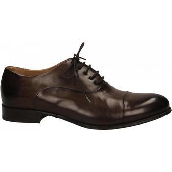 Pantofi Bărbați Pantofi Oxford Brecos MONT. testa-di-moro