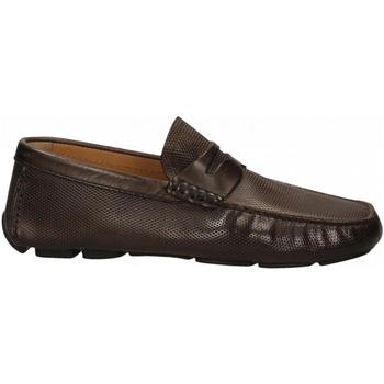 Pantofi Bărbați Mocasini Brecos VITELLO cioccolato