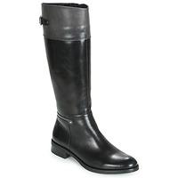 Pantofi Femei Cizme casual Dorking TIERRA Negru / Gri