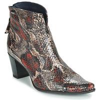 Pantofi Femei Botine Dorking GRANADA Reptilă