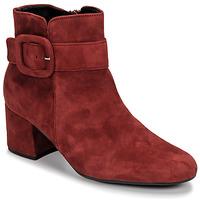 Pantofi Femei Botine Gabor 3581610 Roșu