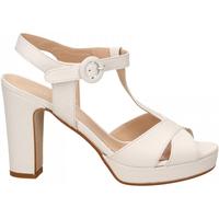 Pantofi Femei Sandale  Les Venues NAPPA bianco