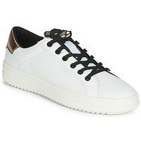 Pantofi Femei Pantofi sport Casual Geox D PONTOISE Alb / Alamă