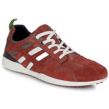 Pantofi Bărbați Pantofi sport Casual Geox U SNAKE.2 Maro / Cărămiziu
