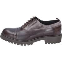 Pantofi Bărbați Pantofi Oxford  Ossiani classiche pelle camoscio Marrone