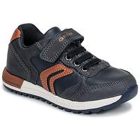 Pantofi Băieți Pantofi sport Casual Geox B ALBEN BOY Albastru / Coniac