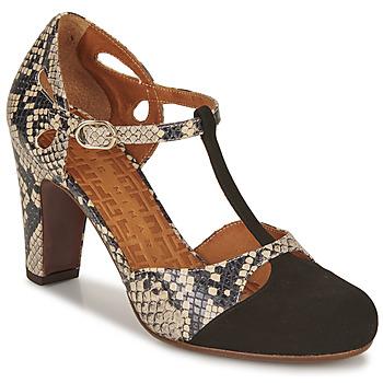 Pantofi Femei Pantofi cu toc Chie Mihara KUNA Negru / Bej