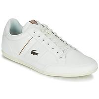 Pantofi Bărbați Pantofi sport Casual Lacoste CHAYMON 319 1 Alb
