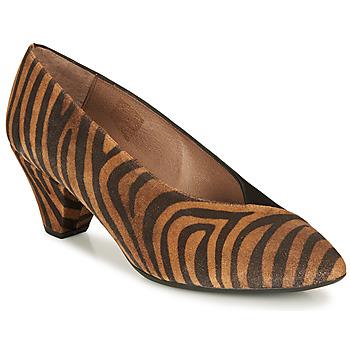 Pantofi Femei Pantofi cu toc Wonders I7601-ZEBRATO-CUERO-ANTE-NEGRO Maro