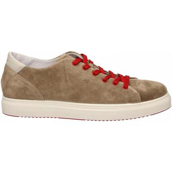 Pantofi Bărbați Pantofi sport Casual IgI&CO USH 31327 tortora