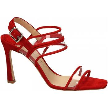 Pantofi Femei Sandale  The Seller CAMOSCIO rosso