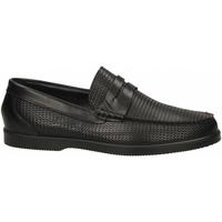 Pantofi Bărbați Mocasini IgI&CO UCE 31095 nero