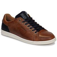 Pantofi Bărbați Pantofi sport Casual Redskins OSTAN Coniac / Albastru