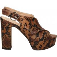 Pantofi Femei Pantofi cu toc Les Venues LINDY diamant-cognac