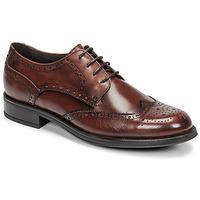 Pantofi Bărbați Pantofi Derby Carlington LOUVIAN Maro