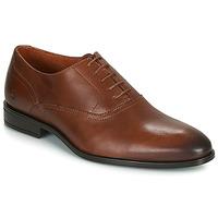 Pantofi Bărbați Pantofi Oxford Carlington LUDIVIEN Coniac