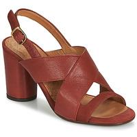 Pantofi Femei Sandale și Sandale cu talpă  joasă Chie Mihara UDO Roșu