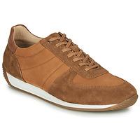 Pantofi Bărbați Pantofi sport Casual Casual Attitude LARY Camel