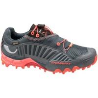 Pantofi Femei Pantofi sport Casual Dynafit WS Feline Gtx Gri