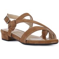 Pantofi Femei Sandale  Frau CAMOSCIO SELLA Marrone