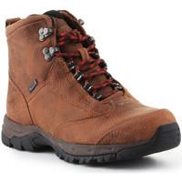 Pantofi Femei Drumetie și trekking Ariat Trekking shoes  Berwick Lace Gtx Insulated 10016229 brown