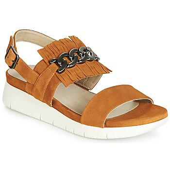 Pantofi Femei Sandale și Sandale cu talpă  joasă Dorking 7863 Maro