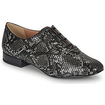 Pantofi Femei Pantofi Derby André VIOLETTE Gri